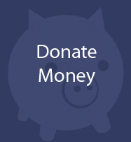Donate Money